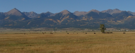 The Sangre de Cristo Mountains seem painted with gold in this photo taken from the Wet Mountain Valley floor just outside of Westcliffe Tuesday morning.