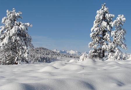 snow102209